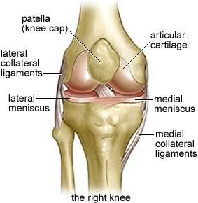 Adolescent knees!!!!